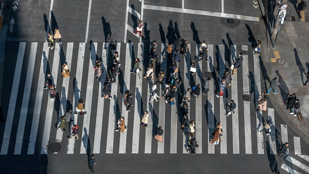 Aerial over crowd of japanese pedestrian crossing street with sunset light. elevated view over asian people walking in busiest road intersection of tokyo city