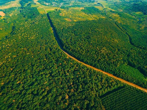 여름날 아름다운 푸른 숲과 도로의 공중 무인 항공기 사진