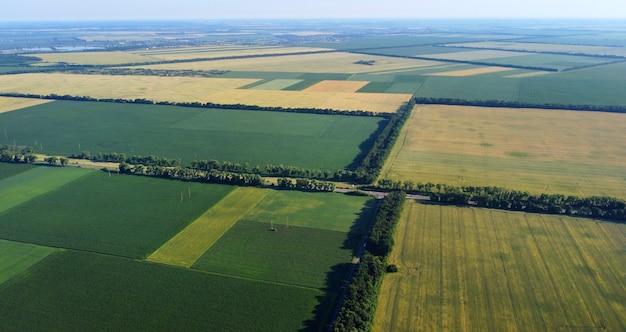 Воздушный беспилотный полет над различными засеянными сельскохозяйственными полями