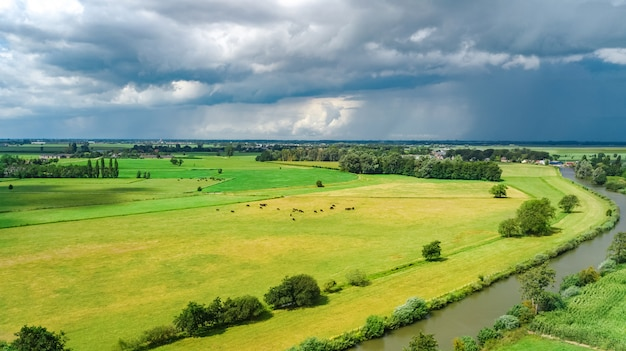 Aerial drone view of green fields and farm houses near canal from above, typical dutch landscape, holland, netherlands