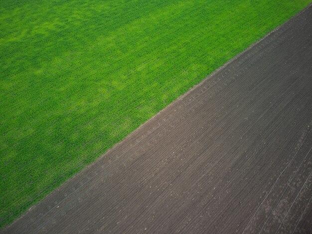 Вид с воздуха на зеленое поле побегов пшеницы и вспаханной почвы.