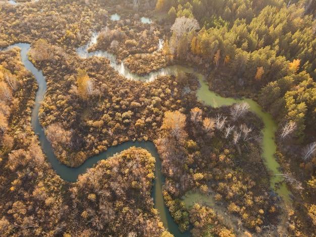 川と秋の風景の空中ドローンビュー