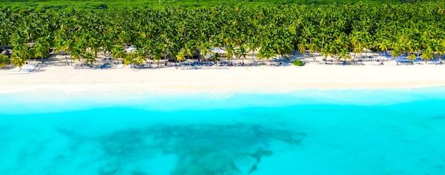 야자수가 있는 아름다운 카리브해 열대 섬 해변의 공중 무인 항공기 보기. saona, 도미니카 공화국. 휴가 배경.