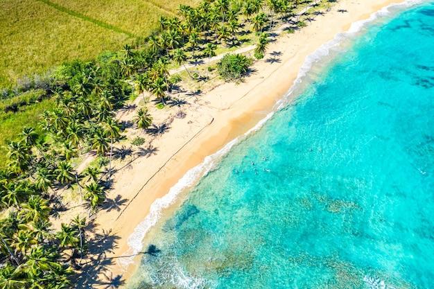 야자수와 함께 아름다운 야생 카리브해 열대 마카오 해변의 공중 무인 항공기 보기. 도미니카 공화국. 휴가 배경.