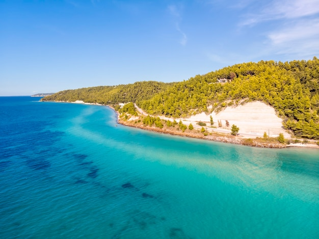 ギリシャ、ハルキディキのfourkaskala海と松林の空中ドローンビュー