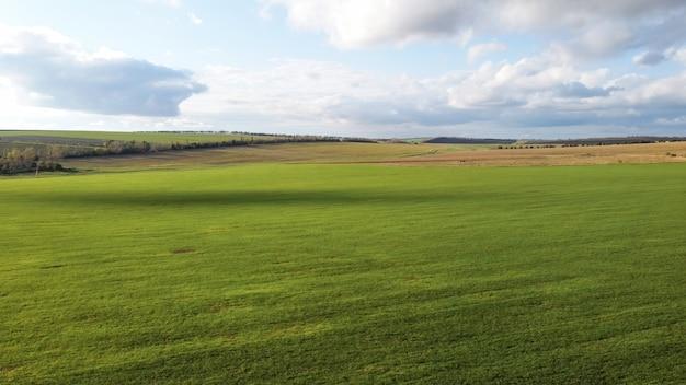 モルドバの自然の空中ドローンビュー、播種されたフィールド、遠くの木、曇り空