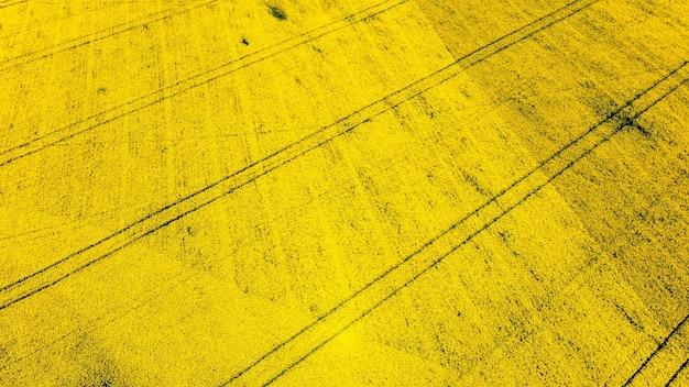 Вид с воздуха на природу молдовы с беспилотника. желтое поле, тракторные гусеницы