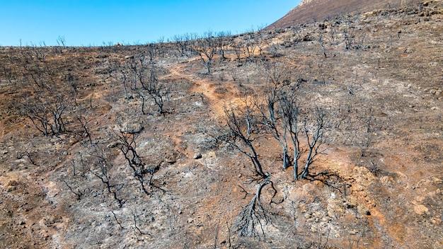 Вид с воздуха с дронов на последствия пожаров в греции