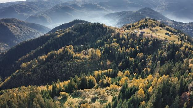 Воздушный зеленый горный лес никто не природа пейзаж в тумане осенние сосны и зелень травы