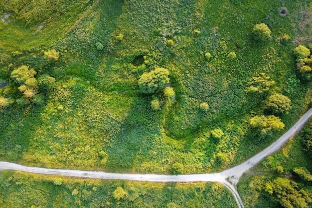 나무와 시골도 공중 조 경 여름 필드