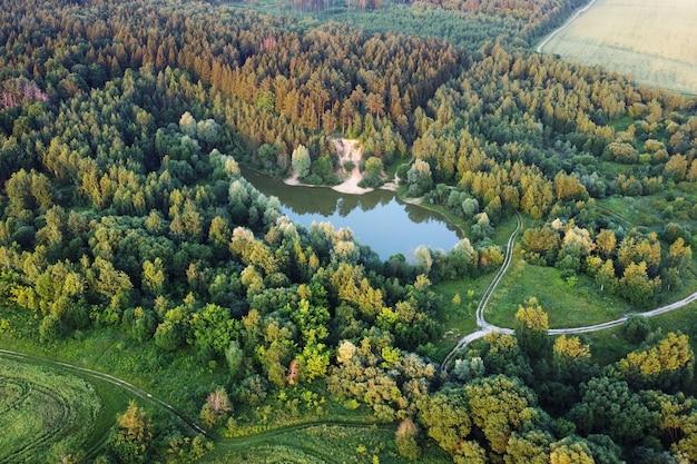 Вид с воздуха на летнее лесное озеро