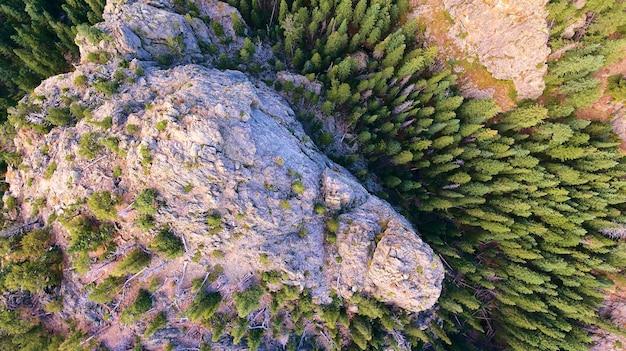 大きな山と松の木を見下ろす空中