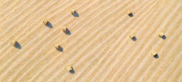 건초 bales, 자연 패턴 농업 분야의 공중 파노라마