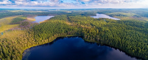 Панорамный вид с воздуха на леса и озера региона карелия, россия
