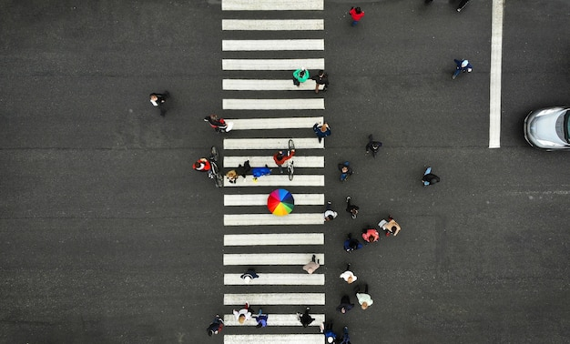 Aerial. people crowd on pedestrian crosswalk. zebra crossing, top view. one person from crowd holds colorful umbrella.