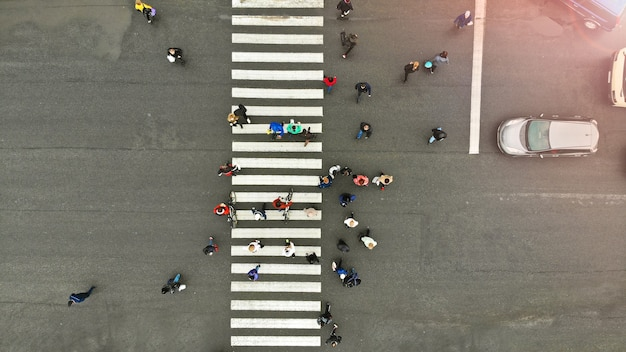 Aerial. people crowd on pedestrian crosswalk. zebra crossing, top view.