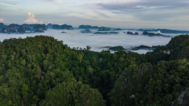 Aerial photo  of beautiful morning, thailand .
