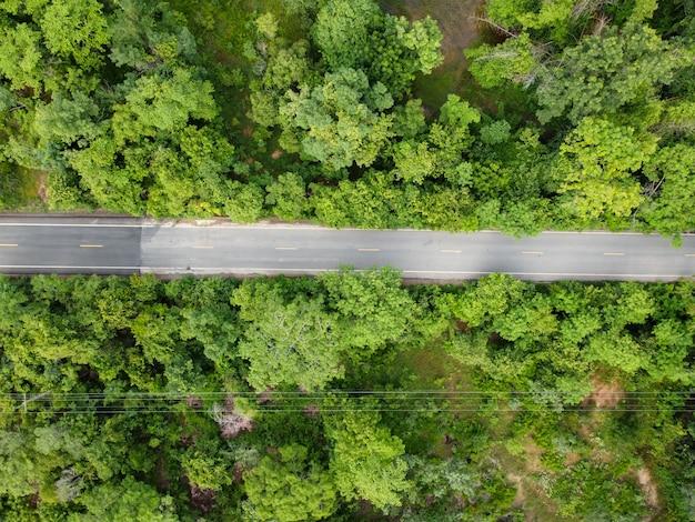 航空写真、道路と緑の森