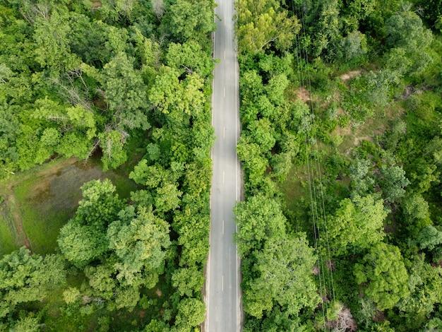Аэрофотоснимок, зеленый лес с дорогой