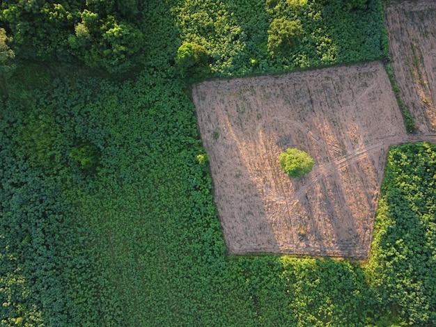 Аэрофотосъемка зеленых сельскохозяйственных участков с незанятыми землями, ожидающими посадки