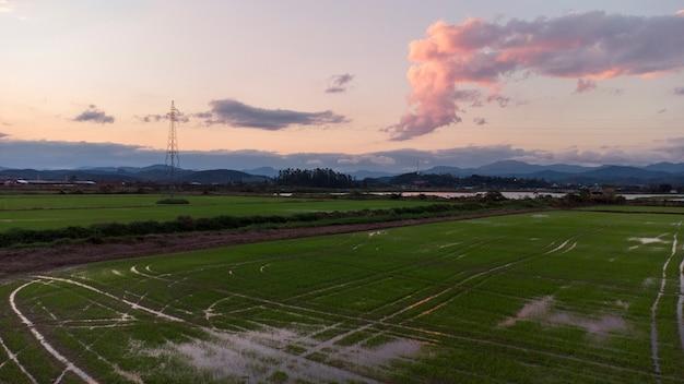 Воздушное рисовое поле на закате