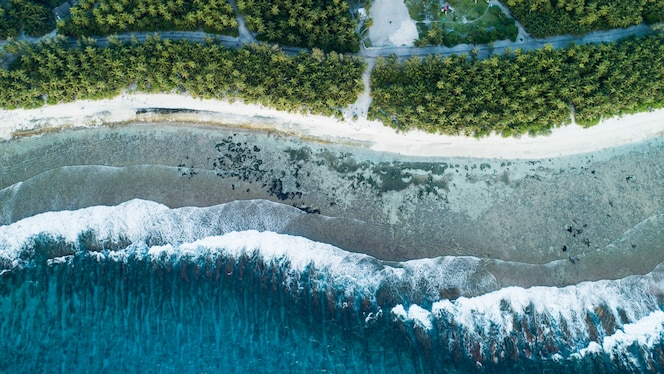 Aerial shot of the beach with the waves from the sea and the jungle of maldives