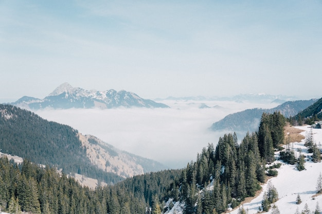 Aerial shot of a beautiful mountain range covered with snow and green fir trees