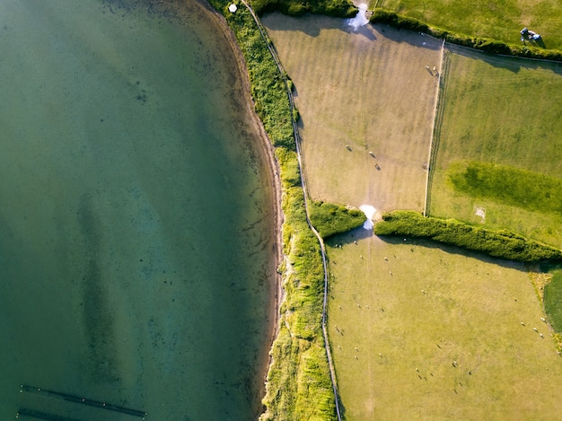 Aerial shot of a field near the turquoise ocean taken over the fleet, weymouth, dorset, uk