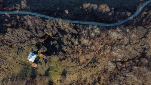 Aerial shot of a forest with dense trees, a road and a small building - green environment