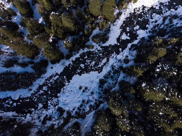 Aerial shot of a frozen river in the forest in winter