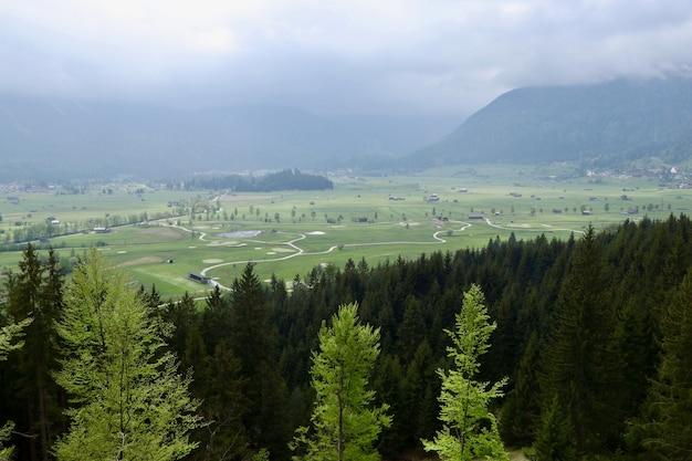 Ripresa aerea di un paesaggio verde con bellissimi abeti e montagne