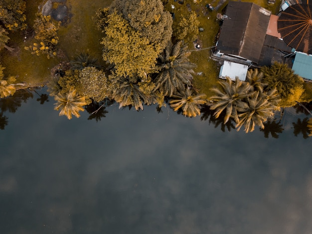 Aerial shot of a house surrounded by trees near the sea