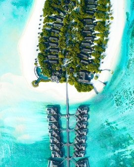 Aerial shot of houses built over the sea and on the land with trees in the maldives islands