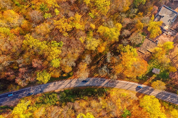 Aerial shot of a lonely road surrounded by trees in autumn
