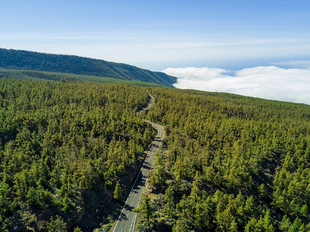 Aerial shot of a long road through the green woodland, scenic cloudscape on the background