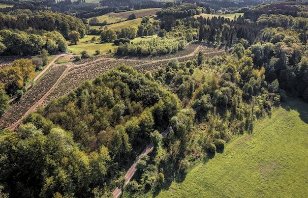 Ripresa aerea di un paesaggio di montagna coperto di alberi