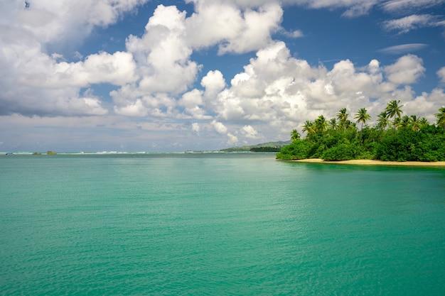 햇빛 아래 녹지로 덮여 아름다운 해안선의 공중 촬영