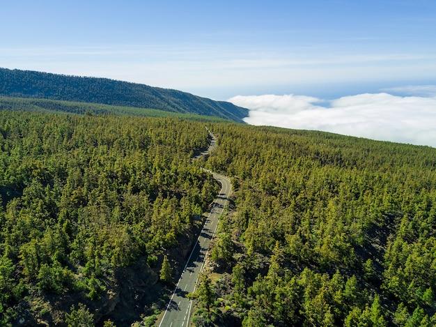 녹색 숲을 통해 긴 도로의 공중 샷, 배경에 경치 좋은 cloudscape