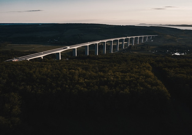 森に建てられた鋼アーチ橋の空中ショット