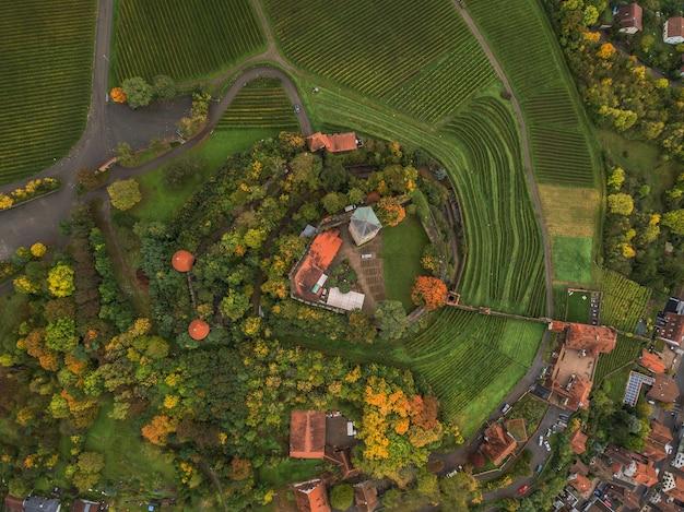 秋の公園の空中ショット