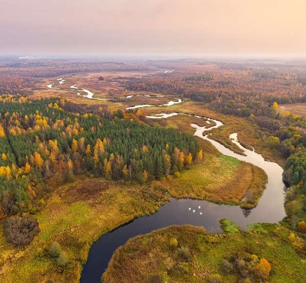 ベラルーシ、シンシャ自然保護区の秋の森と川の空中ショット