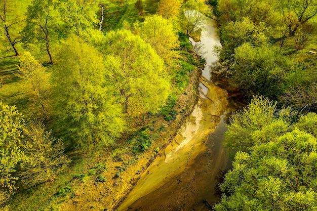 昼間の小川と木の空中ショット