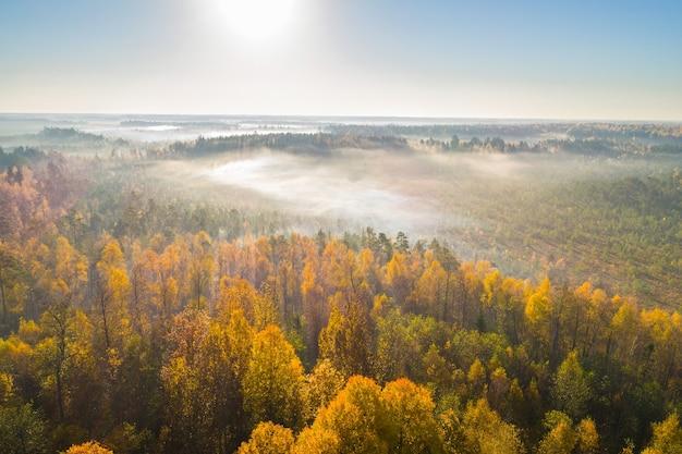 ベラルーシの沼地astravydulebyでの霧の秋の朝の空中ショット