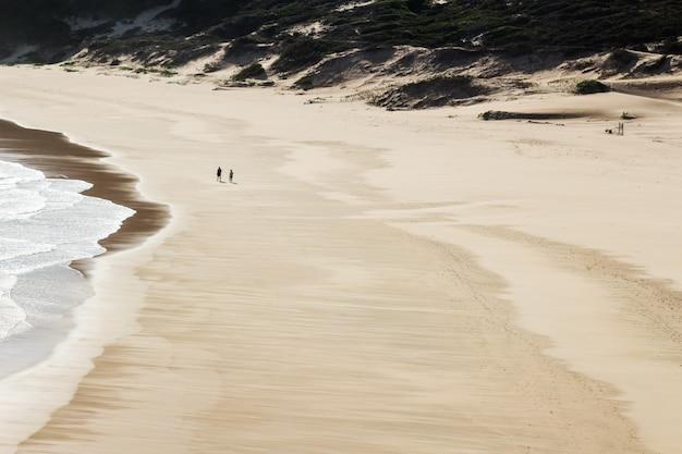 海沿いの美しいビーチを歩く2人の空中ショット