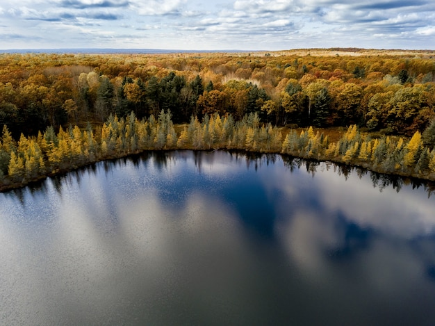 Aerial shot of a pond surrounded by yellow and green trees under a blue cloudy sky