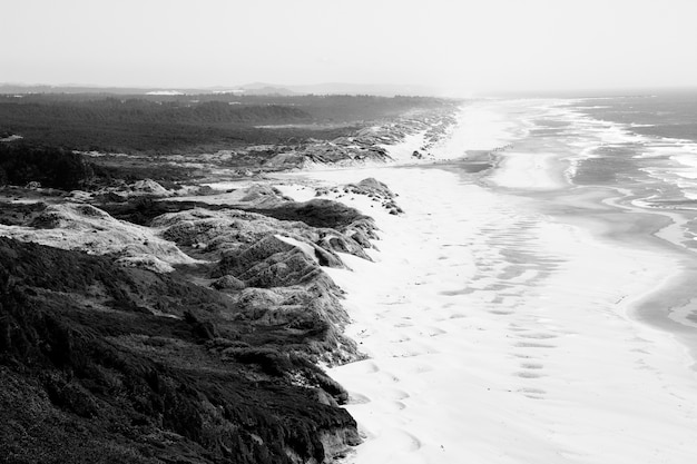 Aerial shot of seashore near hills with grassy field in black and white