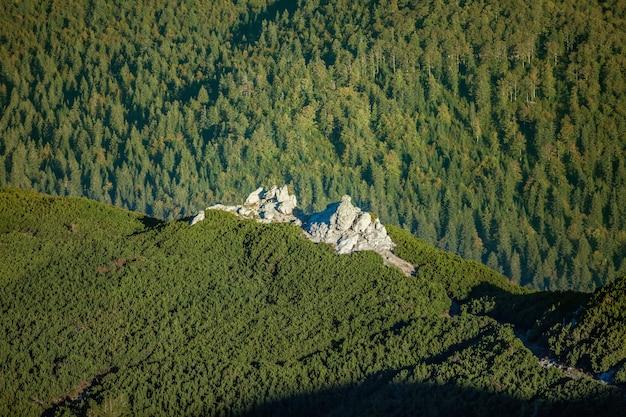 Ripresa aerea della montagna rocciosa sneznik ricoperta di foreste in slovenia