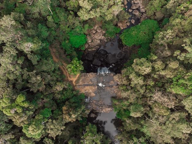 Ripresa aerea di un flusso d'acqua circondato da alberi verdi