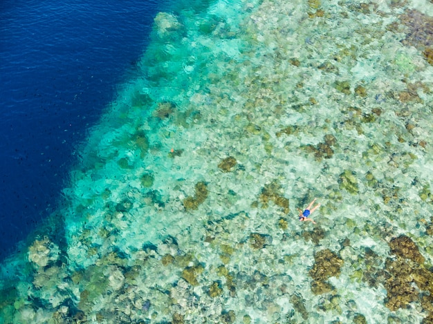 Aerial top down view coral reef tropical caribbean sea, turquoise blue water