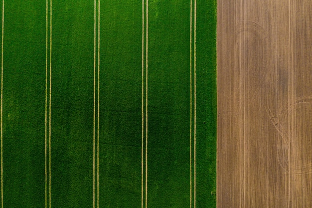 Aerial top view of agricultural fields, field with green grass on one side and plowed field on the other, abstract background with textures